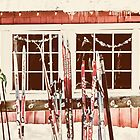 Skis at Rest by Tracy Riddell