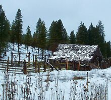 Dilapidated Barn..Between Ritter and Bates Oregon by trueblvr