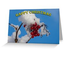 Christmas card: berries in the snow Greeting Card