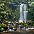 Beauchamp Falls, Otways, Victoria by Christopher Ashdown