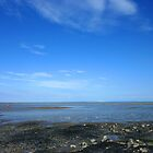 Severn Estuary at Penarth II by Artberry