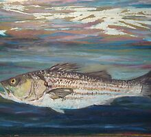 Striper by Barbara  Healy