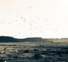 Free Bird by Jether Sweetnam