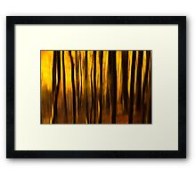 Golden Blur Framed Print