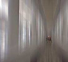 Equilibrium by Christian Hartmann