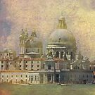 iPhone cover - Venice, Madonna della Salute by Luisa Fumi
