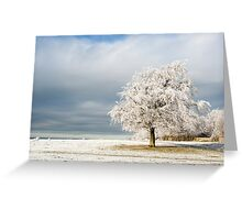 A Winter's Morning Greeting Card