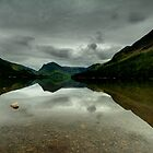Buttermere panorama by davediver