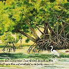 Mangrove Morning Col. 2:6-7a by Janis Lee Colon