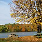 Autumn Picnic in the Park by lorilee