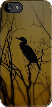 Avian Silhouette iPhone Case by artisandelimage