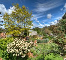 Stoney Bottom - A Garden in Bridgetown, Western Australia by Elaine Teague