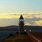 Brixham Breakwater and Lighthouse by Hovis