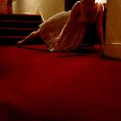untitled #252 by Bronwen Hyde