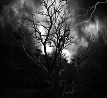 The Lightning Tree by Rookwood Studio ©