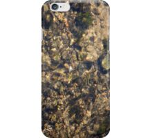 Clear iPhone Case/Skin