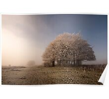 Misty Morn Poster
