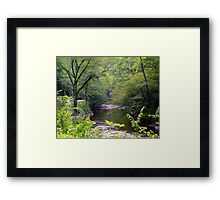 Road to Gatlinburg Framed Print