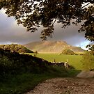 Pen-y-Ghent by Paul McGuire