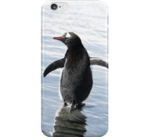 Gentoo Penguin - iPhone iPhone Case/Skin