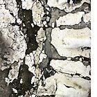 iPhone Case - Cracked Pavement by Orla Cahill Photography