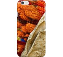 iPhone Case - Orange Scrub in a Brown Paper Bag iPhone Case/Skin