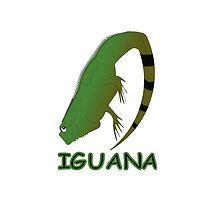 Iguana -  iPhone case by Michelle *