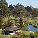 Cowra Japanese Gardens {2} (iPhone case) by CapturedByKylie