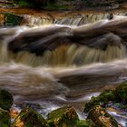 Campsie Glen (2) by Karl Williams