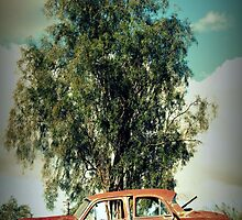 Old Vauxhall .... Weathered and Worn by Tricia Birt