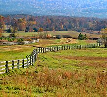 Fall Fences by Carolyn  Fletcher