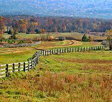 Fall Fences by Carolyn  Fletcher