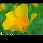 Floral Calendar March by arlain