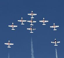 Canadian Snowbirds by fototaker
