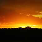 Sunset in Outback Australia by -aimslo-