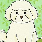 Bichon Frise Dog by zoel