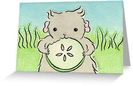 Guinea-pig Eating Cucumber  by zoel