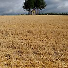 Small chapel in corn field by Sami Sarkis