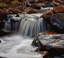 Kingsbury Creek I by Angela King-Jones