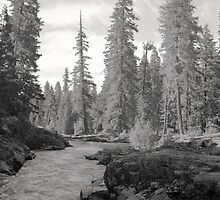 Eloquent Light -The Rogue River above Natural Bridge by Harry Snowden