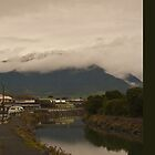 Kaikoura, New Zealand - iPhone case by Odille Esmonde-Morgan