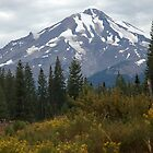 Mt. Shasta by teresalynwillis