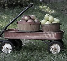 Wagonload of Apple muted tones by vvfineartphotog