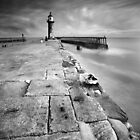 A Plague of Lighthouse Keepers BW by Andy F