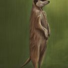 Its a Meerkat by Adam Howie