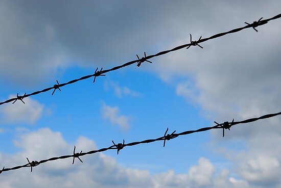 Barbed wires against cloudy sky by Sami Sarkis