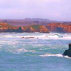 Great Ocean Road [The Apostles] Victoria by Virginia  McGowan