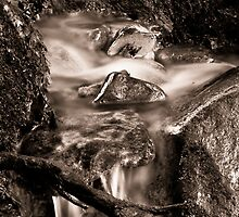 Waterstream in the forest by justaphotonoob