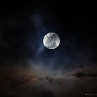 full moon by Jelynn