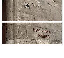 Public Library somewhere in Europe by anjafreak